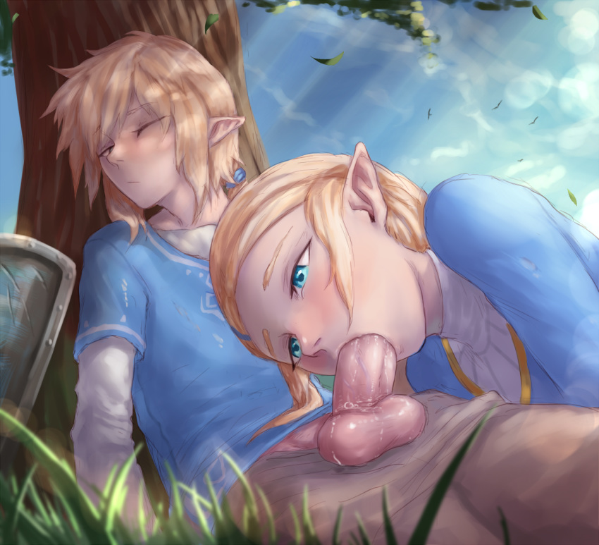 of breath wild zelda princess the hentai Carried by the wind: tsukikage ran
